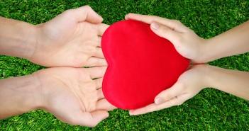 Cultivez votre bonheur en 3 mn chrono - faites des dons - jechangemylife