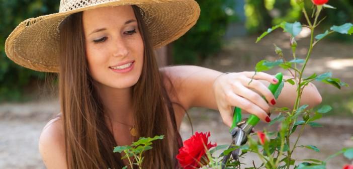 Cultivez votre bonheur en 3 mn chrono (Troisième Partie) jechangeMyLife.com