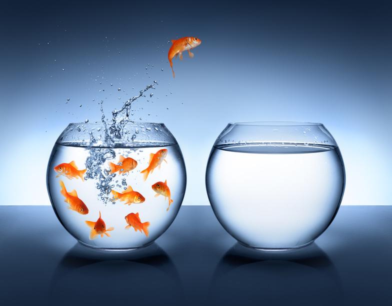 Changer de métier, cela ne s'improvise pas. Jechangemylife.com