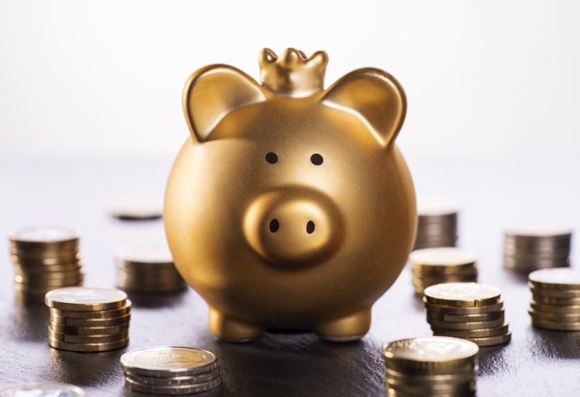 Année sabbatique. Il existe plusieurs solutions pour gérer le budget d'une année sabbatique.